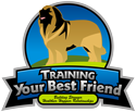 Training Your Best Friend