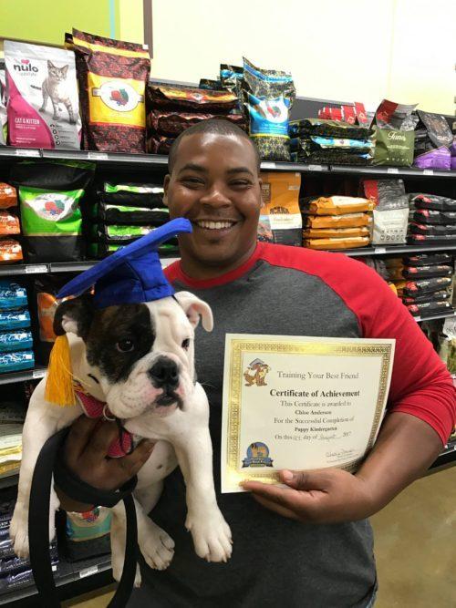 Puppy-Kindergarten-Program-in-Raleigh